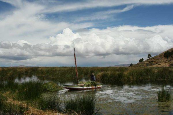 Aguas servidas tiñen de verde el Lago Titicaca