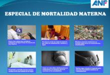 SPOTLIGHT I – Especial ANF y FPP – Mortalidad materna en Bolivia, más allá de las cifras