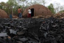 El chaco boliviano se carboniza