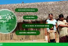 Boletín Diálogo Nro 1 Fundación para el Periodismo 2019